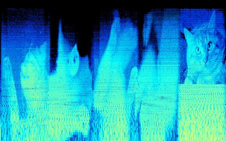 Frequenzanalyse Bilder